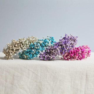 [Gypsophila wrist flower. Small things] Dry flower series | Free shipping | Selectable color system