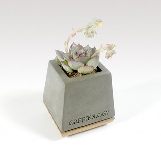 Cement flower with wood base