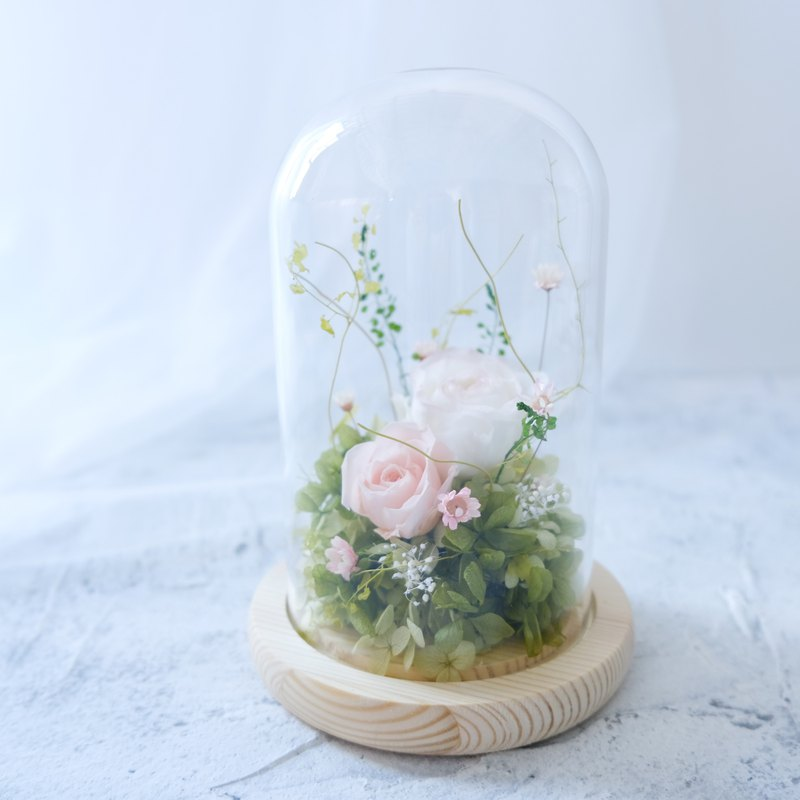 [small garden] glass bell / pink / white / no withered flowers / eternal flowers / dry flowers