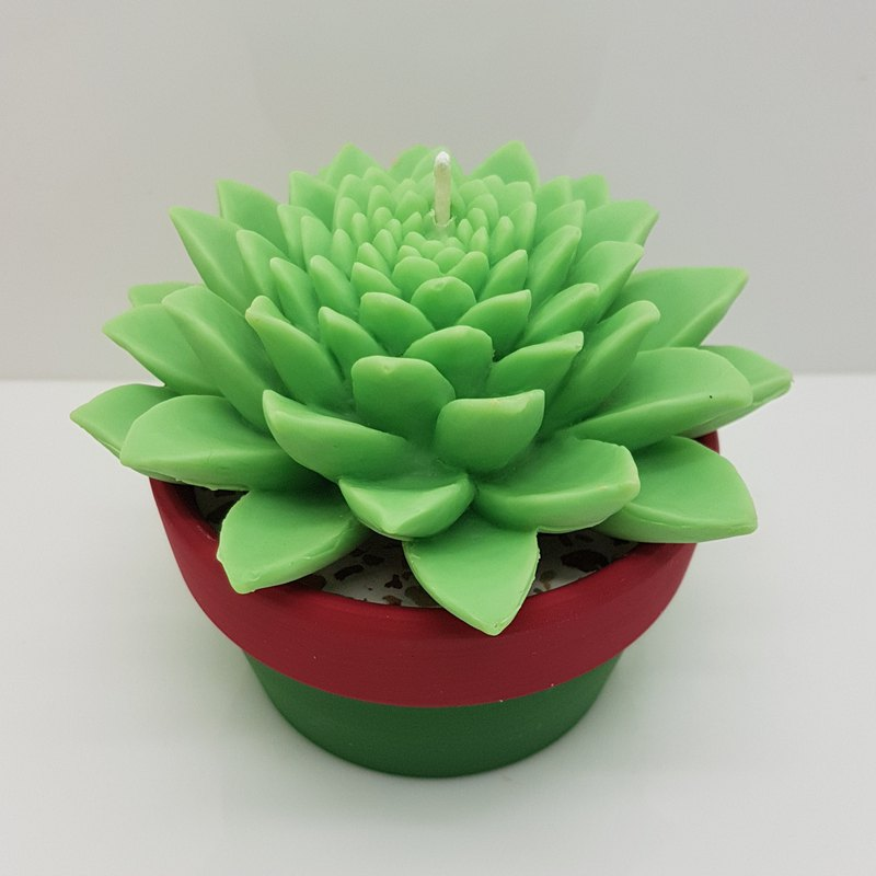 Handmade succulent plant NO 3 with colorful earth pot candle holder
