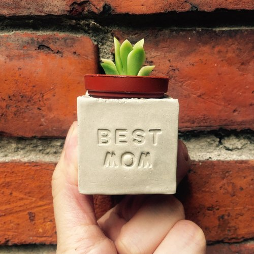BEST MOM. Mother sticks. Mother's day meaty magnet pot