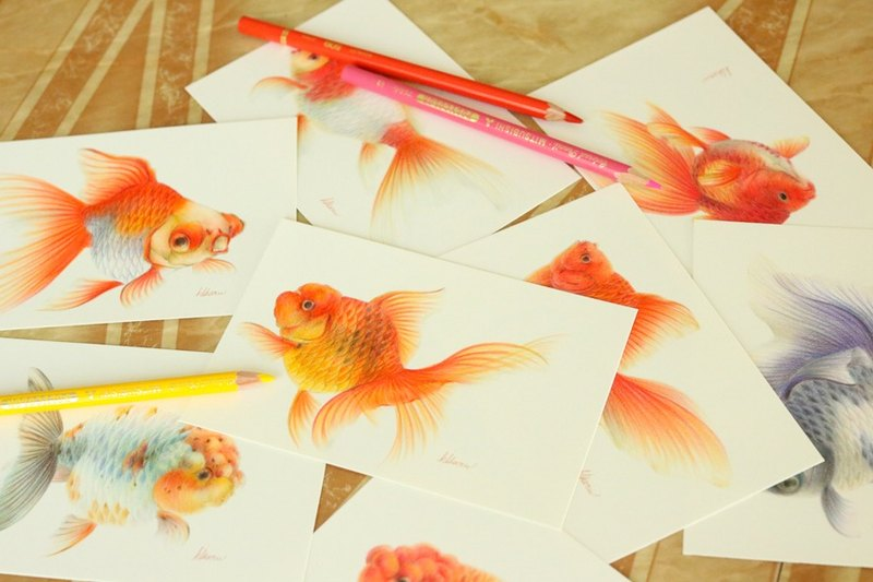 Netherlands lion head illustration goldfish goldfish oranda illustration gold fish