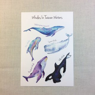 Whale postcards* Kuroshio cooperation products