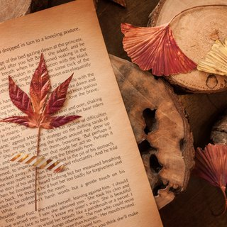 Eternal Metal Autumn Gift Bookmark Ginkgo Maple Leaf