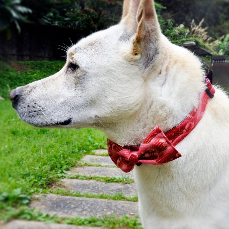 Dog Bowknot + Collar Red Ocean Bow Tie Detachable Bow Tie Red Gentleman Wind