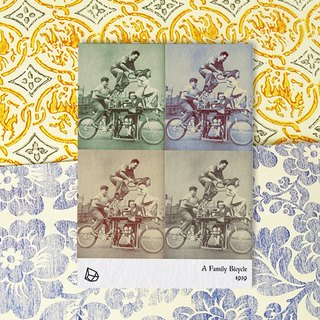 [] The whole family Mapus bicycle (with sewing) - Postcards