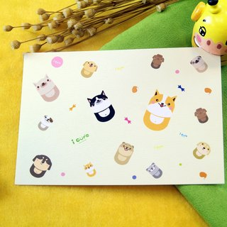 i mail postcard - hair baby big collection series - dog hair baby big collection