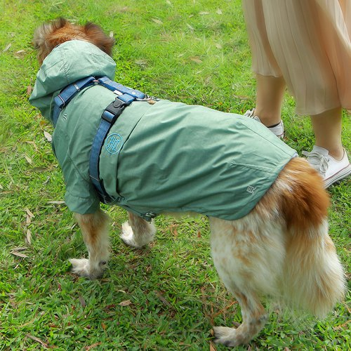 Waterproof and breathable cool feeling pet raincoat - green