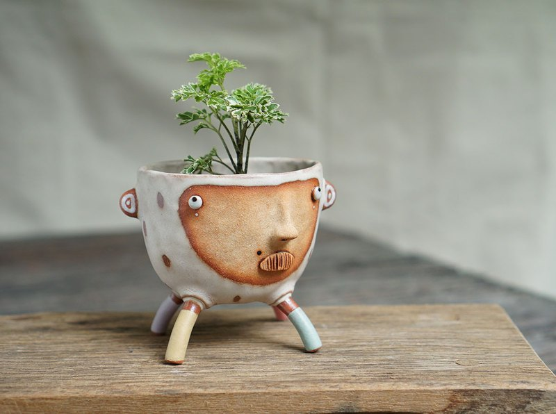 4 legged plant pot ,legged standing plant pot, succulent , flower pot , ceramic