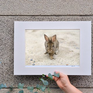 Limited rabbit photography art original - childish