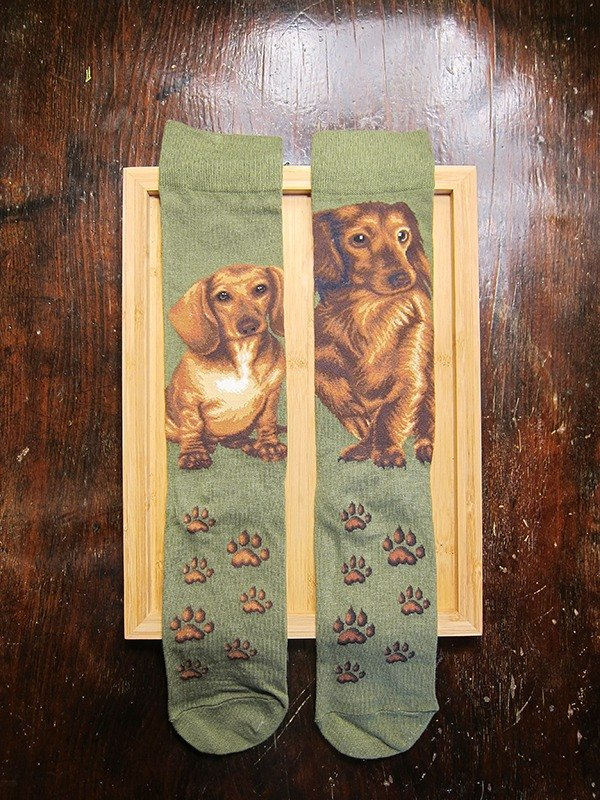 JHJ Design Canadian brand of high saturation knitting socks sausage dog (male) puppy dog ​​cute