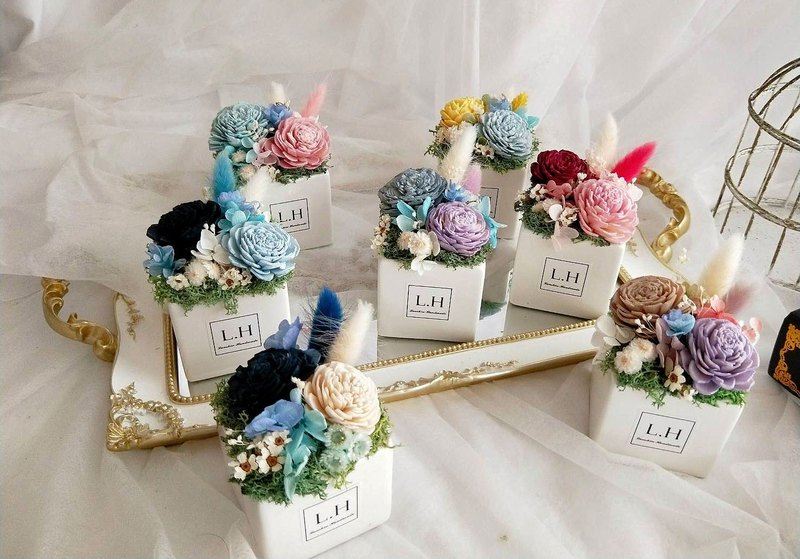 [Blue core hand made] Summer party, dry potted flower, graduation bouquet, birthday present, opening ceremony