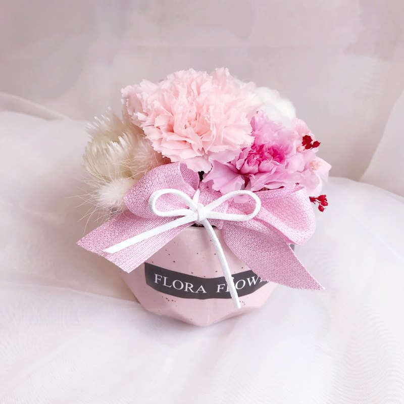 Flora Flower Collection Carnation Eternal Life Small Potted Gift Box Dry Bouquet Mother
