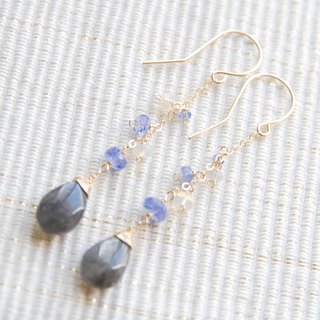 Jewel matter Labradorite and pierced earring of the Tanzanite and Opal  14kgf