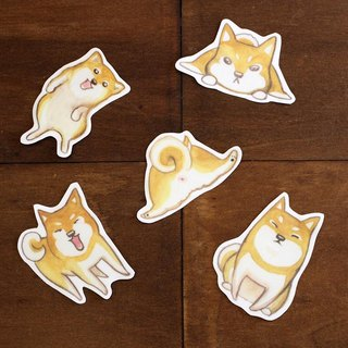 Chai dog waterproof stickers
