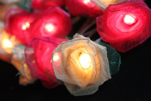 35 Romance Red & White Rose String lights for Patio,Wedding,Party and Decoration