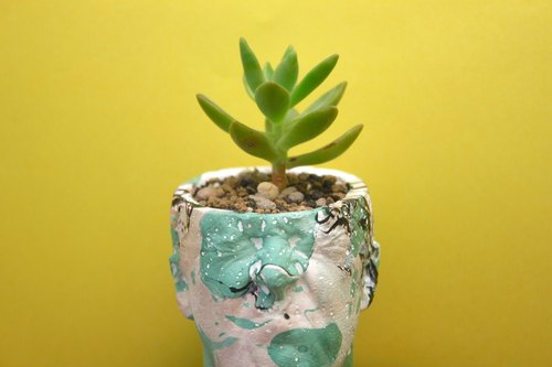 〖〗 Autumn fish hand-made cement Mania planting × succulents _ man ░ ░ color ink