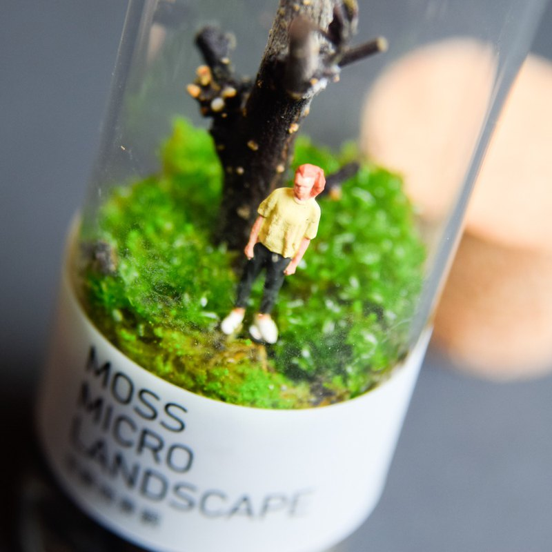 Moss micro landscape-free bottle under the tree-punk girl