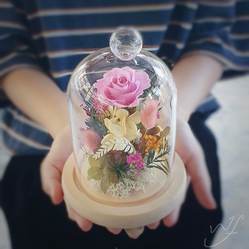 Rose glass bell jar flower birthday gift pot Valentine's Day