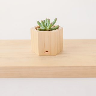 [Wood beehive wood M-high 5cm] hand-carnivorous wood flower / without planting admission