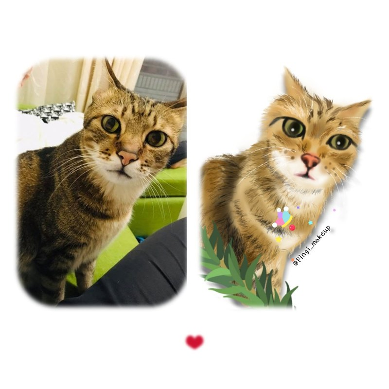 Electric painting - custom pet cat and dog portrait commissioned portrait - Mao children commemorative painting (cat 喵 / tabby