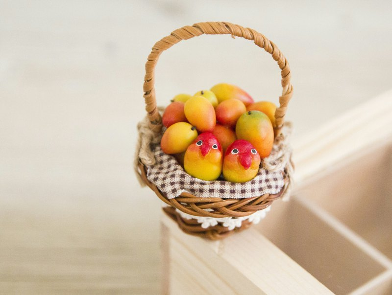 Love birds and mango fruit basket