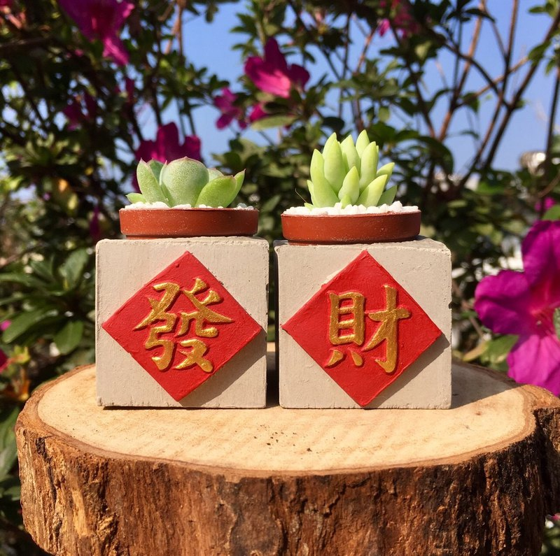Send packing exchange gift fortune group magnet succulent bonsai