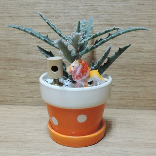 Treatment Department ‧ Succulent Garden [Limited Edition]