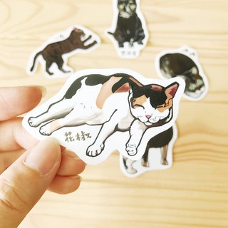【Charity Products】Street Cats' Life - Waterproof stickers (5 pcs)
