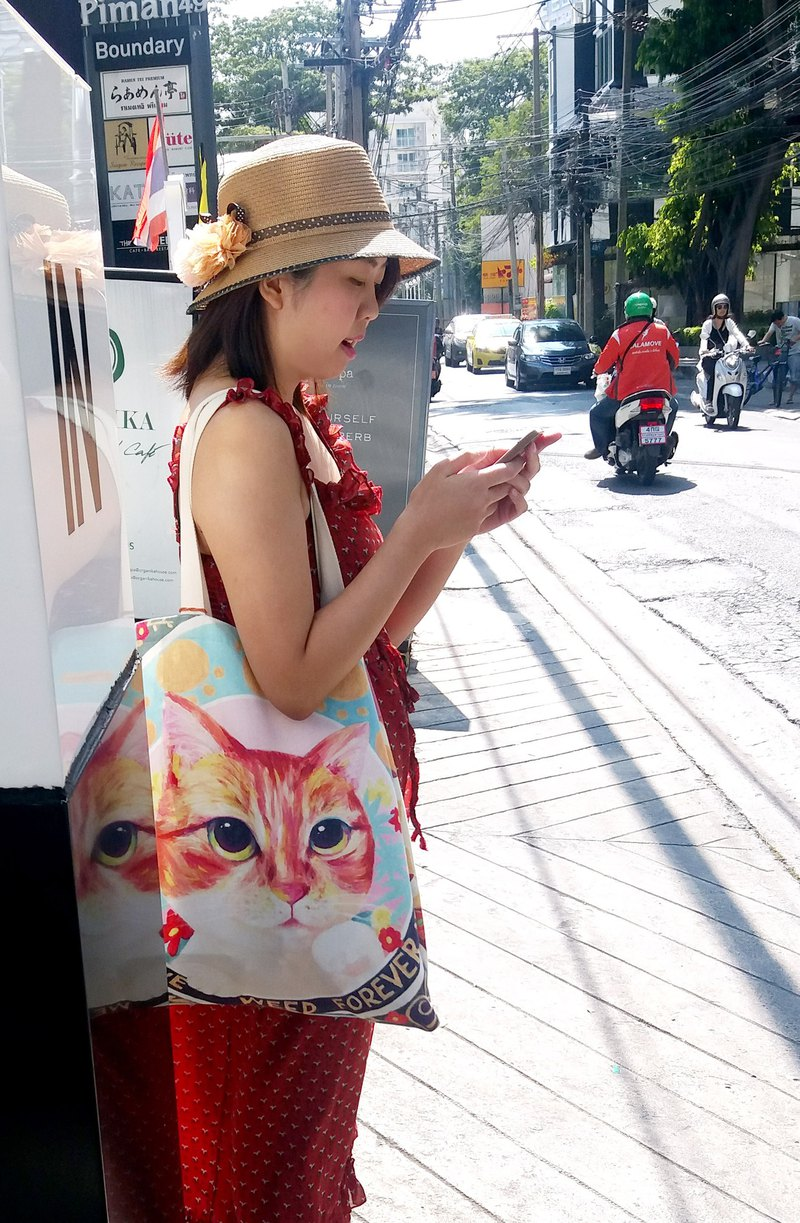 Original hand-painted cat Wenqing cloth bag