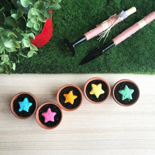 [New] Star Grows vanilla star seed ball planting set birthday gift / wedding small things