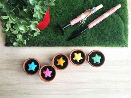 Star Grows Vanilla Star Seed Ball Planting Pot Set Birthday Gift/Gift/Graduation Gift/Miss Moon Ceremony/Wedding Small Things