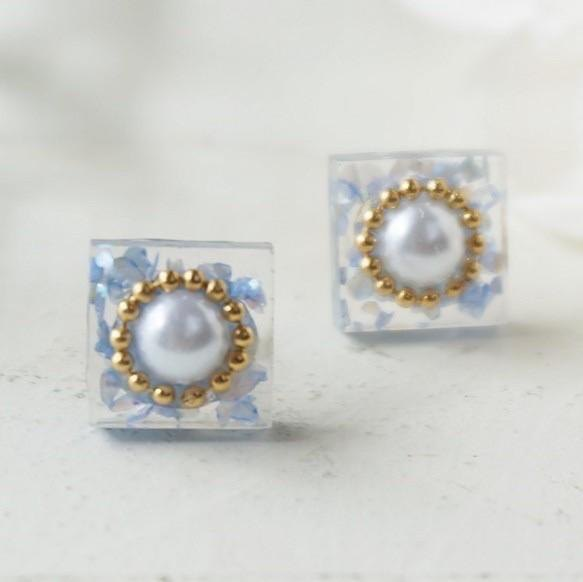 Dessert ♡ earrings / earrings (Blue)