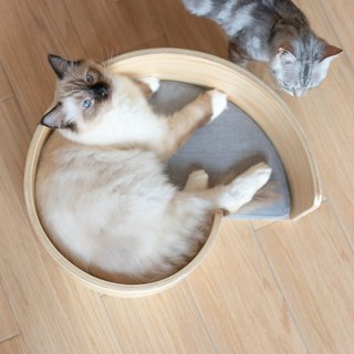 Pidan swirling nest wooden cat litter