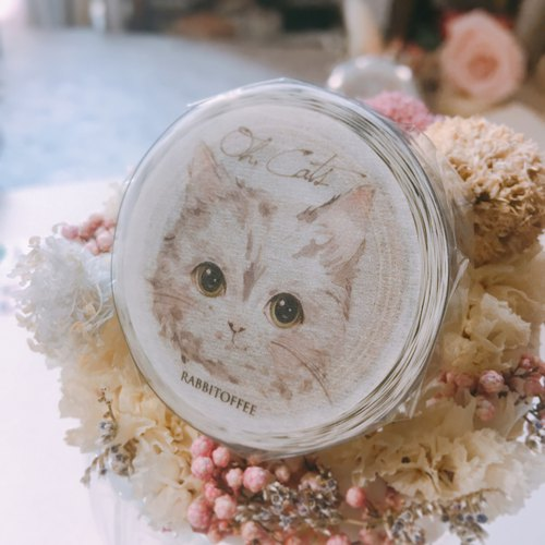 Rabbitoffee Masking Tape (Season 2 No.4) Oh, Cats