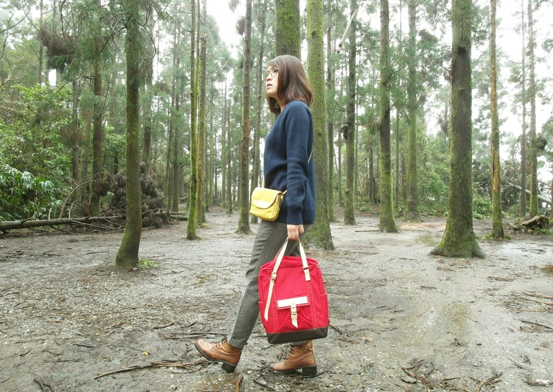 DYDASH【ZeZe Bag】+【Portable Walking Bag】Surprising Set。 (Strawberry+Walking Bag)