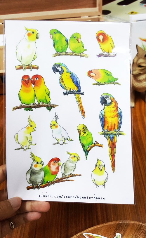 Bonnie watercolor painted parrot stickers (no rolling type)