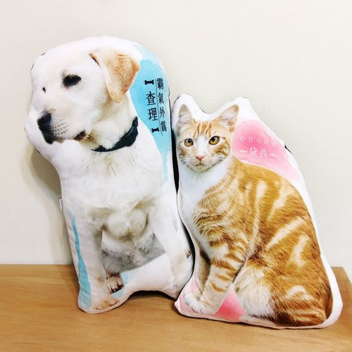 Dog and cat customized pillow 50cm