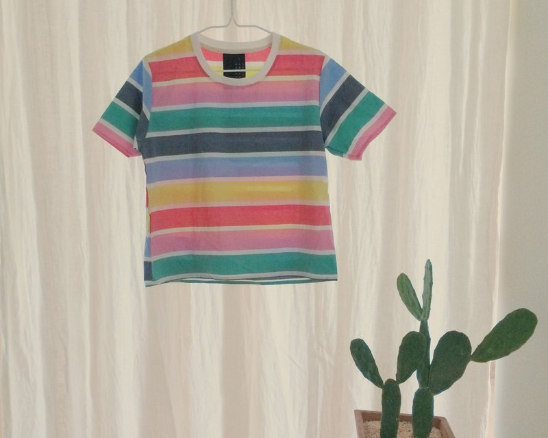 colorful stripe crop top