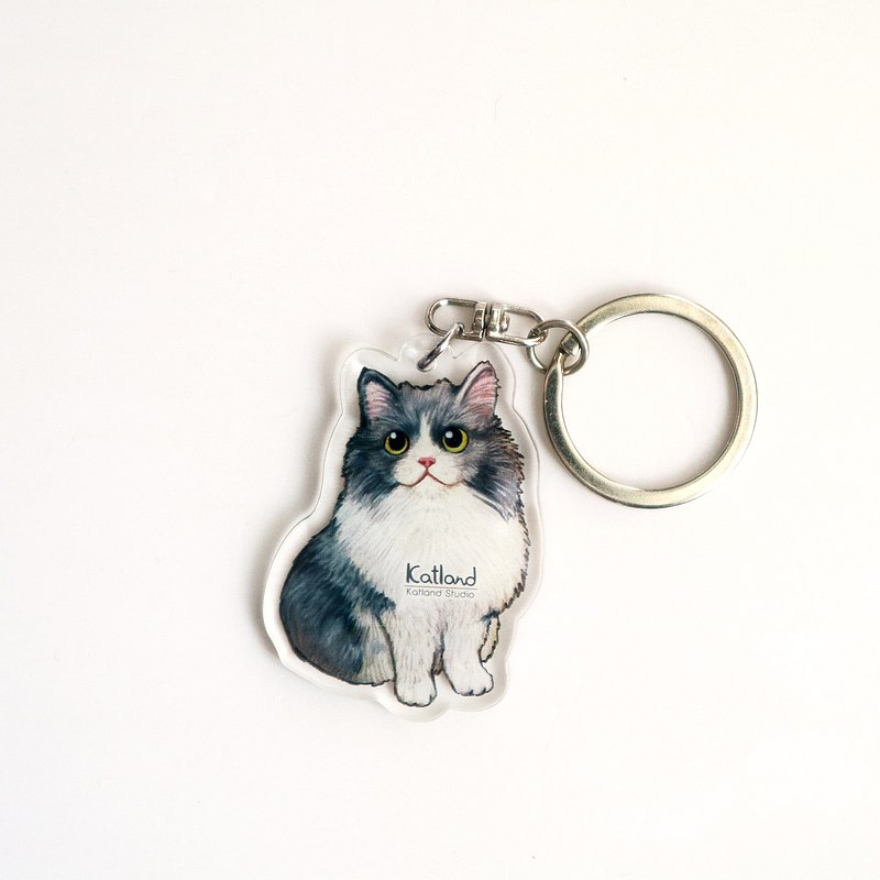 Home-made cat keychain C29