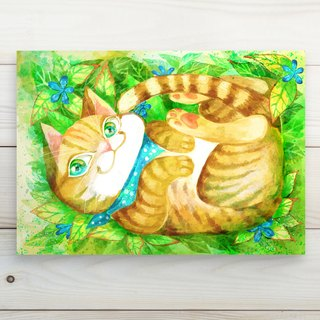 Soft Orange Cat // Postcard postcard