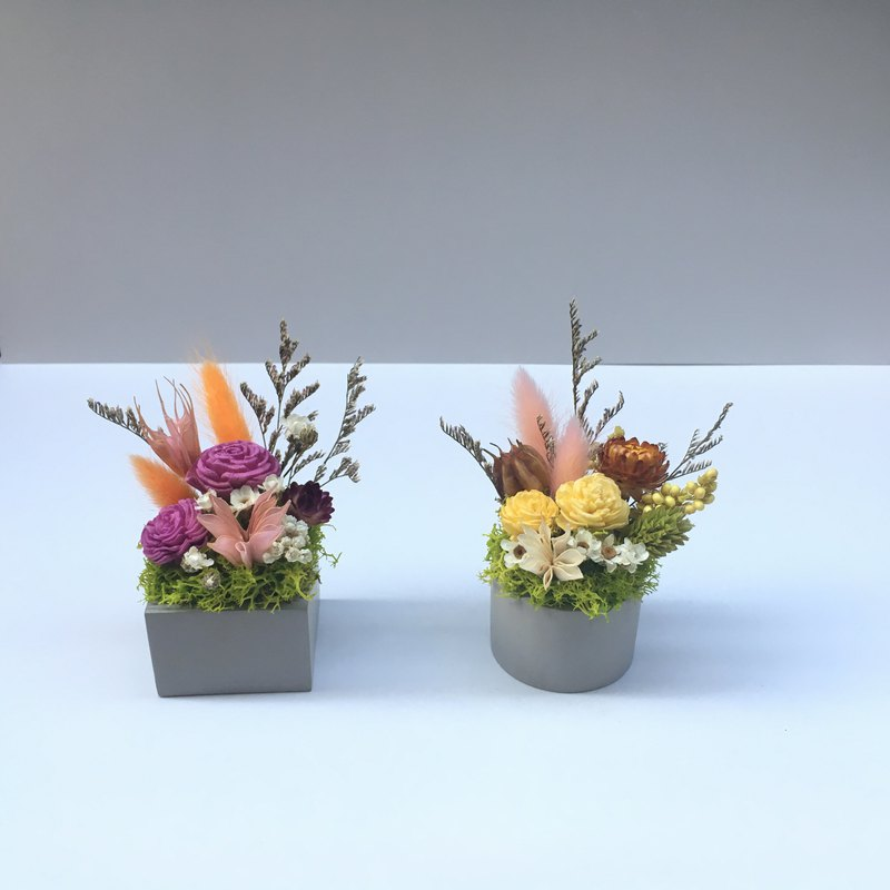 Small cement pot dry flower**fragrance flower**birthday flower ceremony**pot flower**decoration ** (2 colors optional)