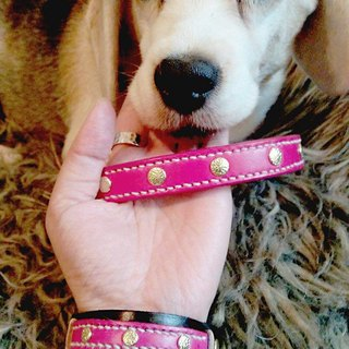 [Handsome] collar handmade leather collars commitment group (XS) - together with a hairy child promise