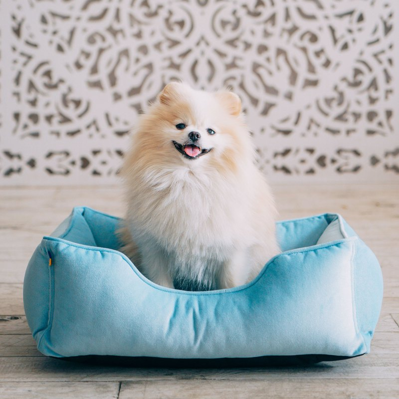 Mini dog bed XS Size 50x40 cm, light blue