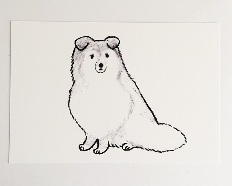 Shettland Sheepdog greeting cards sitting
