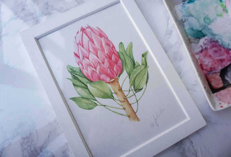 Original Watercolor Painting: Protea. one piece only