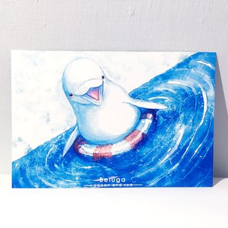 The second season of marine and sea beluga whales / double-sided postcard postcard