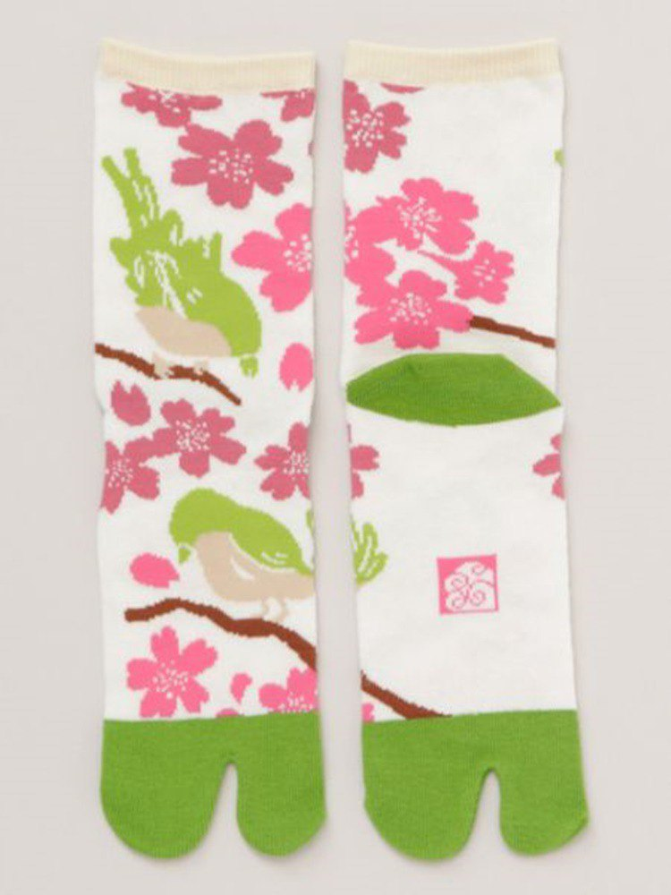 [Popular pre-order] cherry blossom birds and two fingers pocket 24cm 7JKP8128