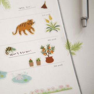 Beautiful decorative transparent stickers -30 jungle, E2D12595