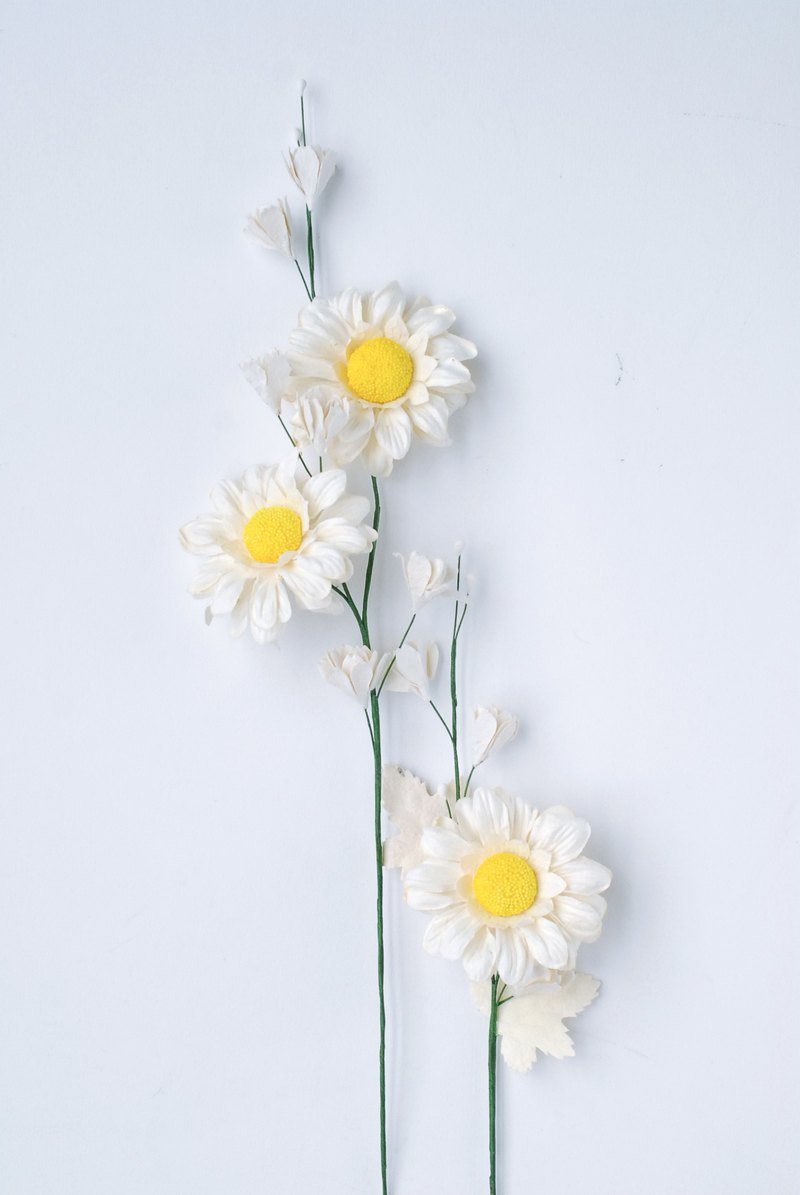Paper Flower branches, paper daisy flowers, white colors and yellow pollen with